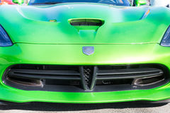 Black Grill on Green Viper Royalty Free Stock Image