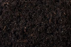 Black ground close up Royalty Free Stock Photos