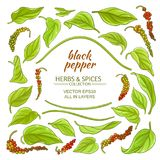 Black ground pepper elements set Royalty Free Stock Images