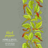 Black ground pepper vector background Stock Image