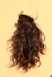 Black hair. Lock of girl hanging thru hole of carton paper Royalty Free Stock Images