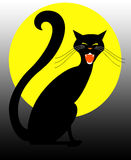Black Halloween Cat Stock Photography