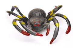 A black Halloween prank toy spider Stock Image