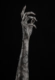 Black hand of death, the walking dead, zombie theme, halloween theme, zombie hands, black background, mummy hands Royalty Free Stock Photo