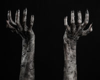 Black hand of death, the walking dead, zombie theme, halloween theme, zombie hands, black background, mummy hands. The hands of the devil, hands monster Stock Photo