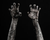 Black hand of death, the walking dead, zombie theme, halloween theme, zombie hands, black background, mummy hands. The hands of the devil, hands monster Stock Image