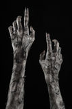 Black hand of death, the walking dead, zombie theme, halloween theme, zombie hands, black background, mummy hands. The hands of the devil, hands monster Royalty Free Stock Image