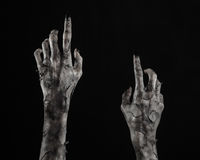 Black hand of death, the walking dead, zombie theme, halloween theme, zombie hands, black background, mummy hands Royalty Free Stock Photography
