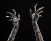 Black hand of death, the walking dead, zombie theme, halloween theme, zombie hands, black background, mummy hands Stock Images