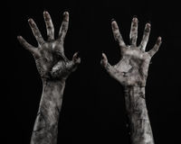 Black hand of death, the walking dead, zombie theme, halloween theme, zombie hands, black background, mummy hands Royalty Free Stock Images