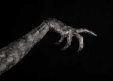 Black hand of death, the walking dead, zombie theme, halloween theme, zombie hands, black background, mummy hands. The hands of the devil, hands monster Royalty Free Stock Photo
