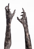 Black hand of death, the walking dead, zombie theme, halloween theme, zombie hands, white background, mummy hands. The hands of the devil, hands monster Royalty Free Stock Photos