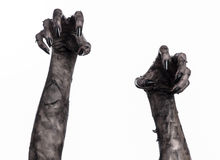 Black hand of death, the walking dead, zombie theme, halloween theme, zombie hands, white background, mummy hands. The hands of the devil, hands monster Stock Photos
