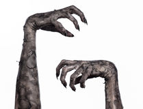 Black hand of death, the walking dead, zombie theme, halloween theme, zombie hands, white background, mummy hands Royalty Free Stock Image