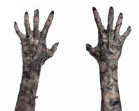 Black hand of death, the walking dead, zombie theme, halloween theme, zombie hands, white background, mummy hands Stock Photos