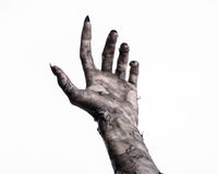 Black hand of death, the walking dead, zombie theme, halloween theme, zombie hands, white background, mummy hands Royalty Free Stock Photos