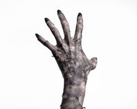 Black hand of death, the walking dead, zombie theme, halloween theme, zombie hands, white background, mummy hands. The hands of the devil, hands monster Royalty Free Stock Images