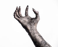 Black hand of death, the walking dead, zombie theme, halloween theme, zombie hands, white background, mummy hands. The hands of the devil, hands monster Stock Photography