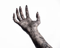 Black hand of death, the walking dead, zombie theme, halloween theme, zombie hands, white background, mummy hands. The hands of the devil, hands monster Royalty Free Stock Photo