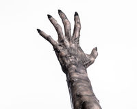 Black hand of death, the walking dead, zombie theme, halloween theme, zombie hands, white background, mummy hands. The hands of the devil, hands monster Stock Photo