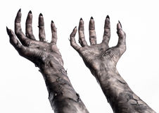 Black hand of death, the walking dead, zombie theme, halloween theme, zombie hands, white background, mummy hands. The hands of the devil, hands monster Stock Images