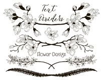 Vector Black Floral Text Dividers. Flower Design Elements. Black Hand Drawn Floral Text Dividers, Line Borders with Branches, Herbs, Plants and Flowers Stock Images