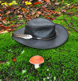Black hat. Black echuca hat with mushrooms on the moos pillow Royalty Free Stock Images