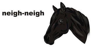 Horse say neigh-neigh. Black head of horse and black words on a white background Royalty Free Stock Photo