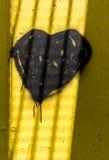 Black heart in prison Stock Image