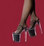 Black heels. Photo beautiful female legs in black heels on red Royalty Free Stock Photos