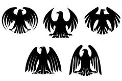 Black heraldic eagles Stock Image