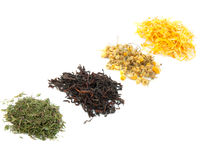 Black and herbal teas Stock Images