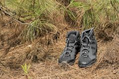 Black hiking boots. In the forest Royalty Free Stock Image