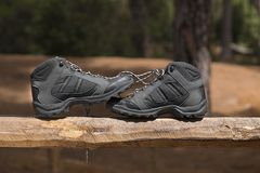 Black hiking boots. In the forest at sunset Stock Photography