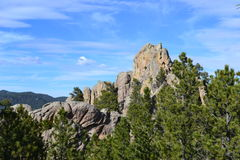 Black Hills Image stock