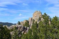 Black Hills Fotografering för Bildbyråer