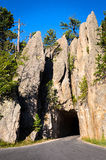 Black Hills arkivfoto