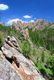 Black Hills av South Dakota arkivfoton