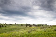 Black Hills i South Dakota arkivfoton