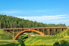 Black Hills Overpass. Highway overpass in the Black Hills in South Dakota Royalty Free Stock Photo