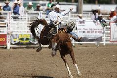 Black Hills Roundup Rodeo Stock Image