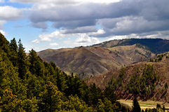 Black Hills södra Dakota-1-3 arkivbild