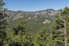 Black Hills scenico fotografie stock