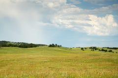 Black Hills South Dakota fotografering för bildbyråer