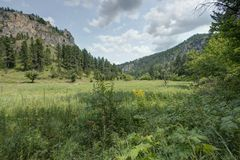 Black Hills in South Dakota. With Clouds and Trees Stock Photography