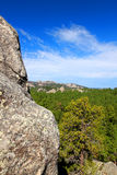 Black Hills of South Dakota Royalty Free Stock Photo
