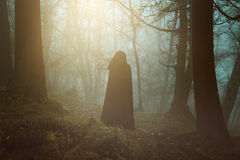 Black hooded person in a surreal forest Stock Image