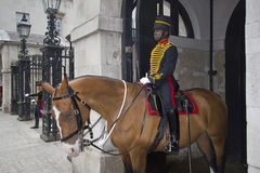 Black Horse Guard London Royalty Free Stock Photo