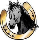 Black horse with horseshoe Stock Image