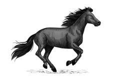 Black horse runs sketch for equine design Royalty Free Stock Image